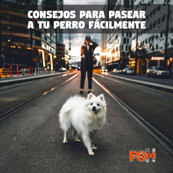 Frases_Pasear_18